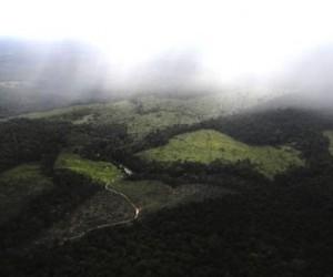 Hallan en la Amazonia una gran reserva de agua dulce