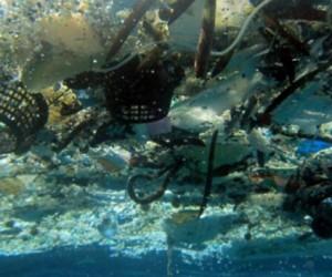 El plástico de los mares pesa tanto como 270.000 autos