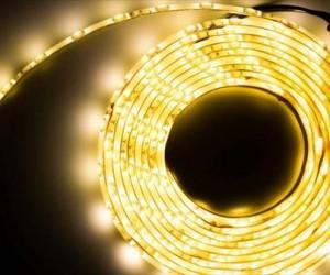Equipo hispano-alemán idea una alternativa a LED tradicional con proteínas