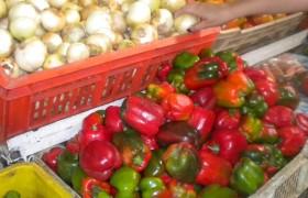 Valencianos pagan hasta Bs. 1.400 por el kilo de cebolla