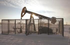 La OPEP sube producción en enero y alerta de efecto negativo de bajos precios